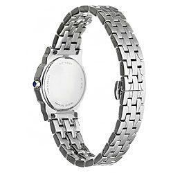 Wittnauer Womens Winter Garden Steel Watch