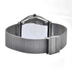 Skagen Womens Ceramic Black Dial Steel Mesh Strap Watch