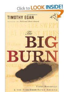 The Big Burn Teddy Roosevelt and the Fire that Saved America Timothy