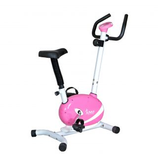 Sunny Pink Magnetic Upright Bike Today $131.99