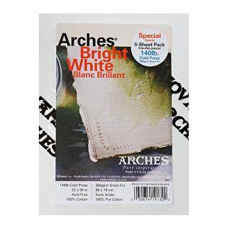 Arches 22 inch x 30 inch Cold Press Waercolor Paper (5 Shees