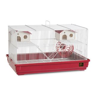 Small Animal Supplies: Buy Cages, Food & Treats