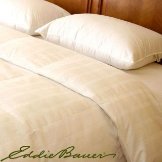 Eddie Bauer 370 Thread Count Jumbo size PrimaLoft Pillows (Set of 2