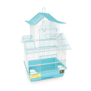 Prevue Pet Products Shanghai Sea Foam and White Parakeet Cage Today $