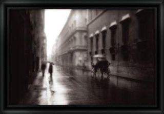 Timothy Wampler Roma Framed Art