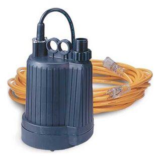 Dqe, Inc. HM1060 Water Pump, Electric, 110 V