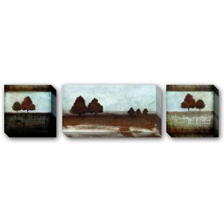Fernando Leal Montana Sky 3 piece Canvas Giclee Set