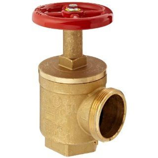 Dixon AV251 Forged Brass Global Angle Hose Valve, 2 1/2 NPT Female x