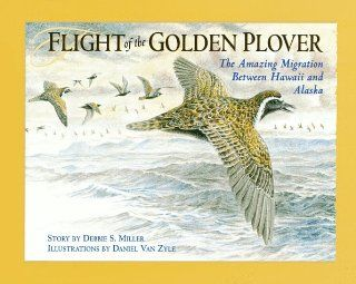 Flight of the Golden Plover The Amazing Migration Between Hawaii and